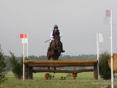 eventing horse jumping